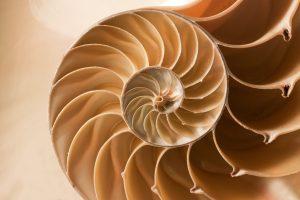 Spiral of joy
