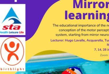 Mirror Learning Webinar